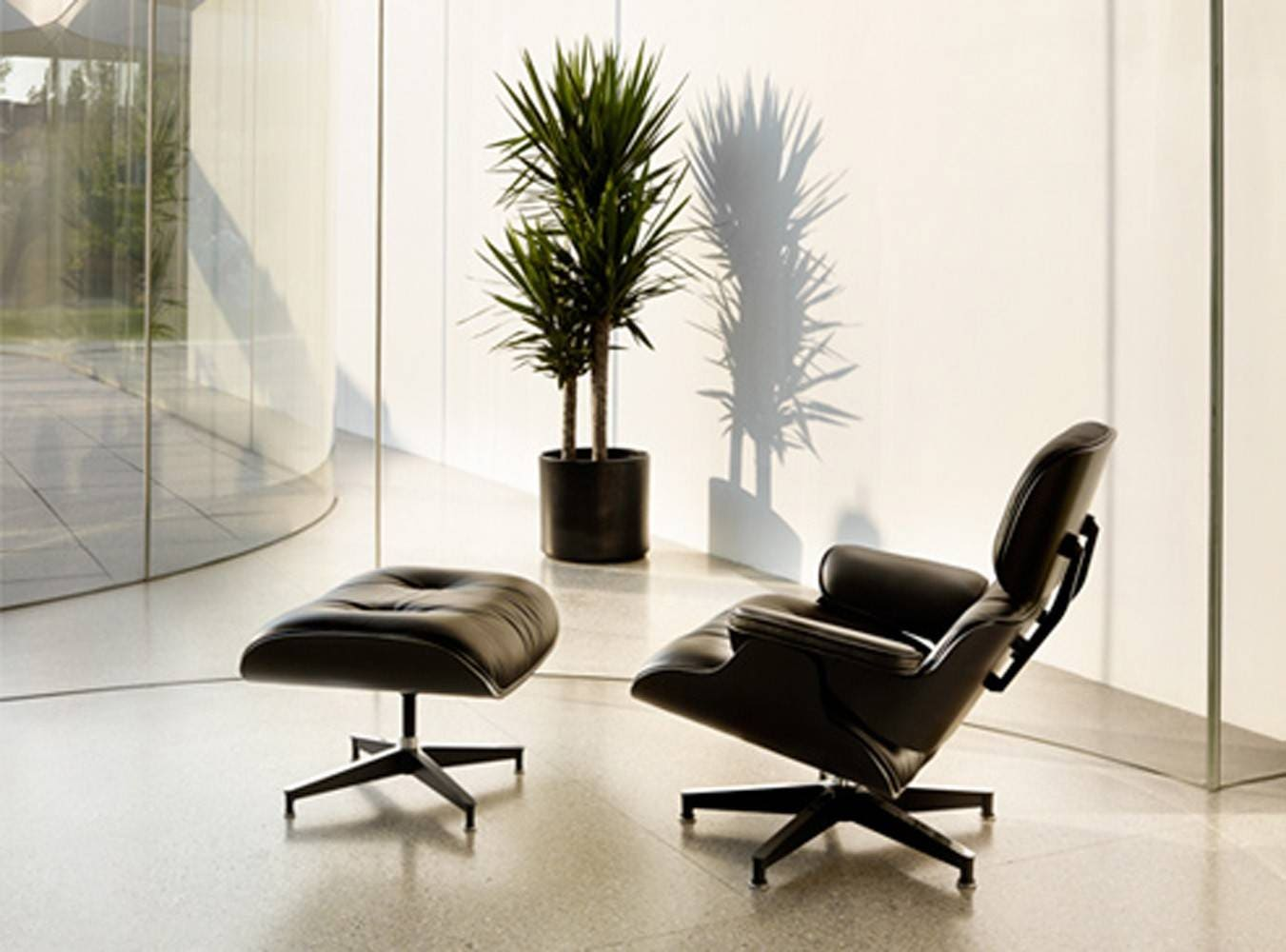 Eames lounge chair in room -  Eames Lounge Chair Ebony 1