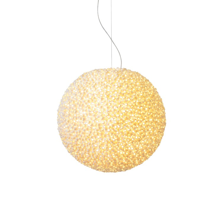 Ango Evolutionary Pendant Lamp