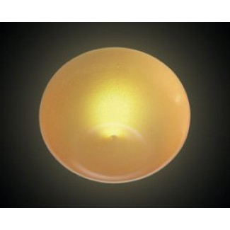 Leucos Ombre PP Satin Wall / Ceiling Lamp