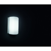 Nemo Italianaluce Merak Wall / Ceiling Lamp
